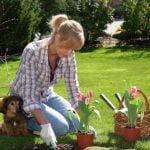 Jardines: Tareas que realizar antes de primavera
