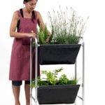 Tenga un espacio verde – Ideal para cualquier hogar