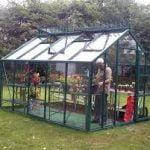 Las plantas perfectas para crecer dentro de los Invernaderos