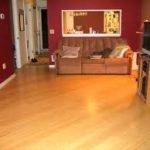 El bambú, la nueva solución para pisos – Parte I