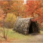 Cómo prepararse para cultivar un huerto de otoño