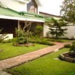 Ideas para principiantes para empezar un jardín en casa – Parte I