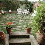 Ideas para principiantes para empezar un jardín en casa – Parte II