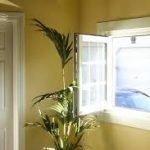 Las ventanas de la casa son muy importantes para decorar