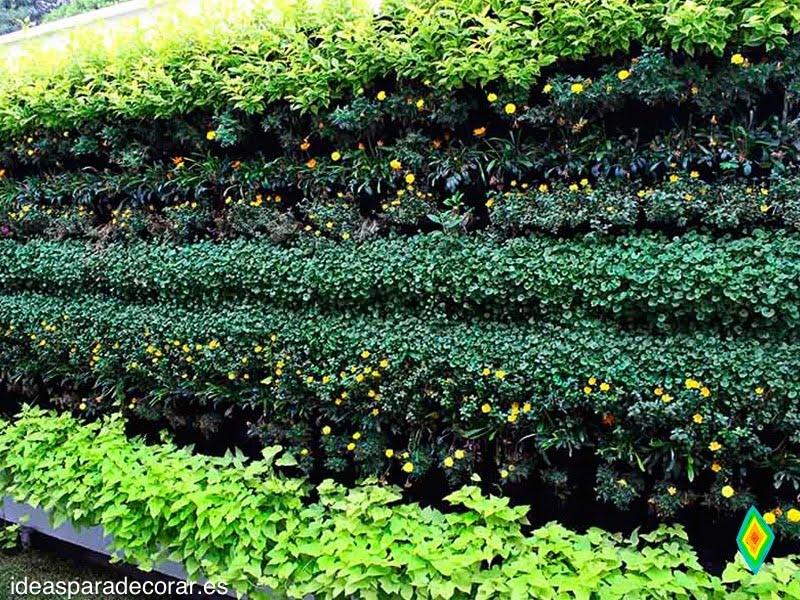 Jardines verticales ideas para decorar - Jardines verticales exterior ...